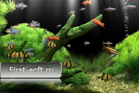 Dream Aquarium Screensaver + crack
