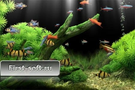 Dream Aquarium Screensaver 1.234 Full